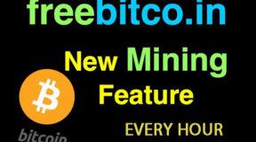 Cách kiếm Bitcoin, Dogecoin miễn phí hàng ngày với Cointiply – MMO